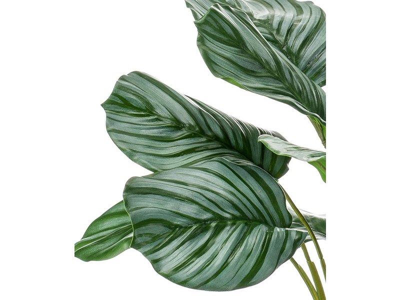 Kunstplant Calathea 45 cm in glas
