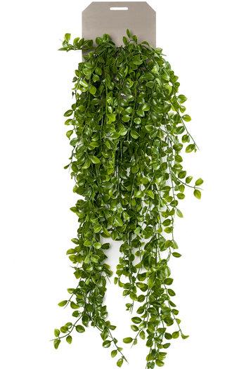Kunst hangplant Ficus pumila 80 cm