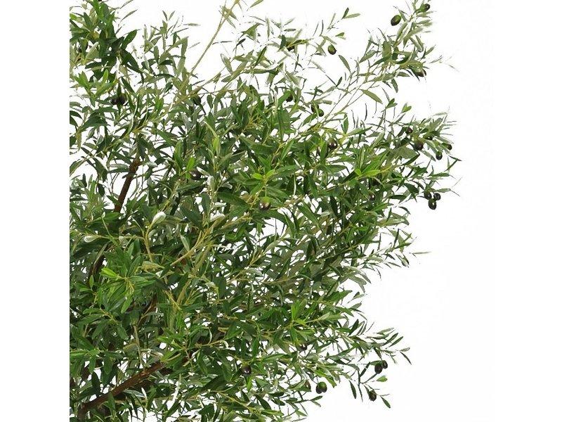 Kunst olijfboom 210 cm
