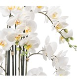 Kunstbloem Orchidee 100 cm wit in pot