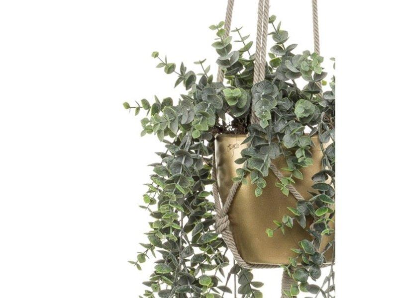 Kunstplant Eucalyptus 75 cm in gouden pot
