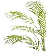 Kunstplant Chamaedorea 85 cm in gouden pot