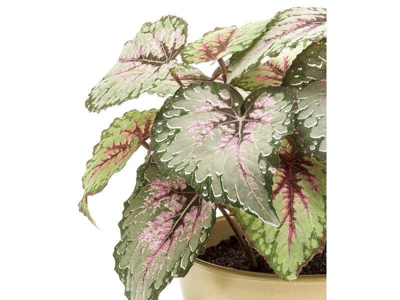 Kunstplant Begonia 25 cm in gouden pot