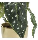 Kunstplant Begonia 30 cm in gouden pot