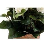 Kunstplant Begonia 30 cm crème in pot