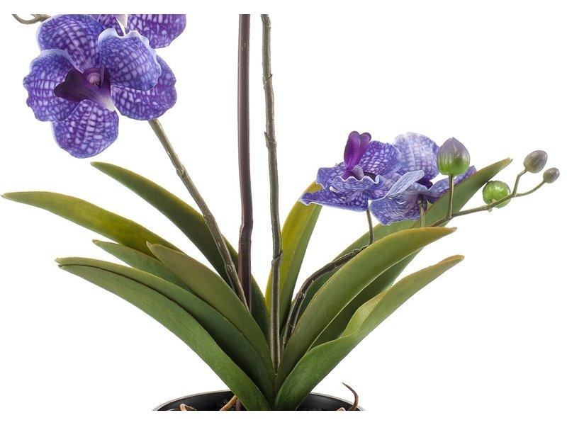 Kunstbloem Vanda 60 cm paars in pot