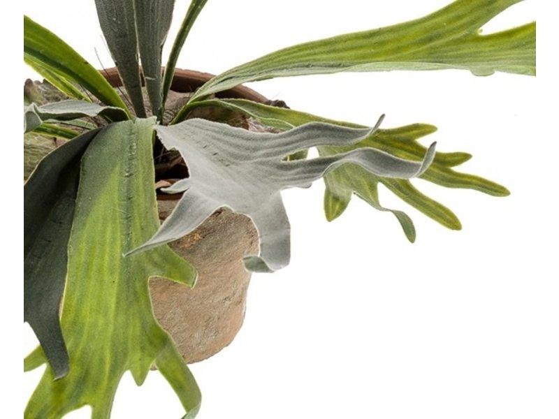 Kunstplant Staghorn 50 cm in pot
