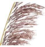 Kunsttak Pampasgras 125 cm paars