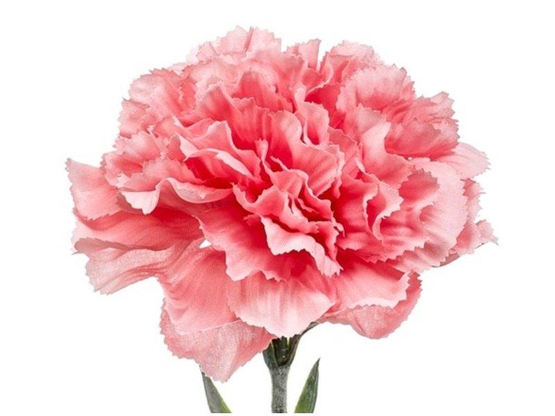 Kunstbloem Anjer 67 cm roze
