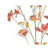 Kunsttak Ficus 112 cm groen/rood