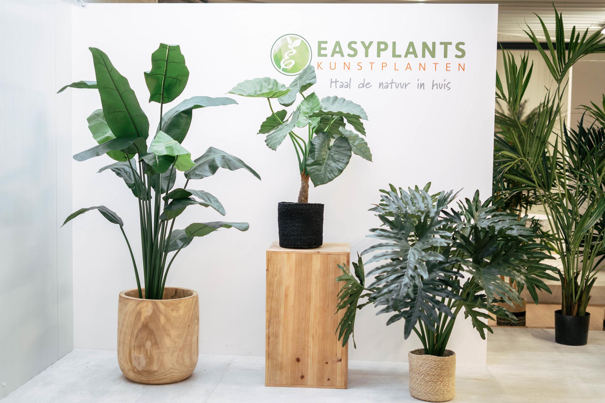 De populairste kunstplanten van 2021