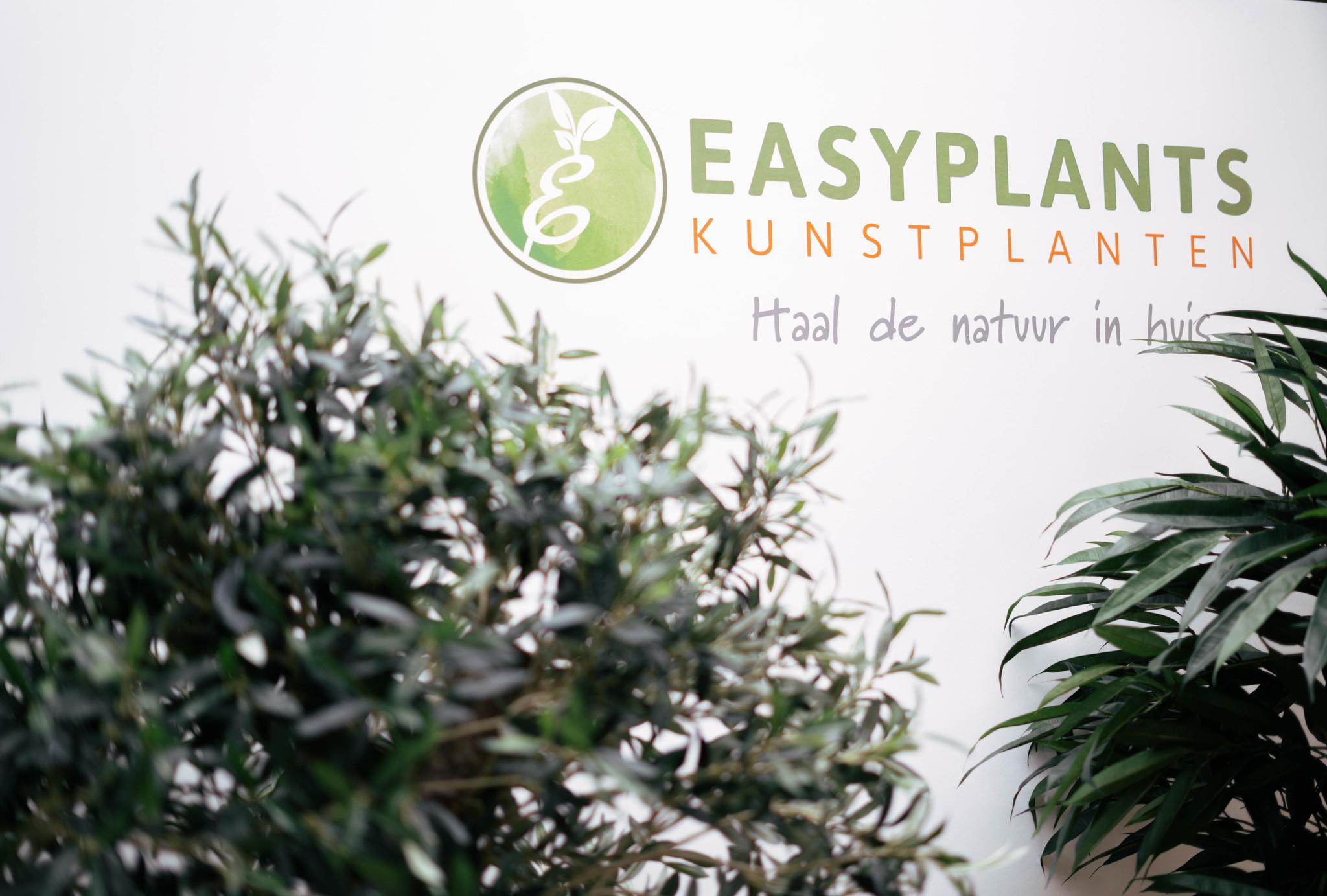 Easyplants Kunstplanten in het AD!