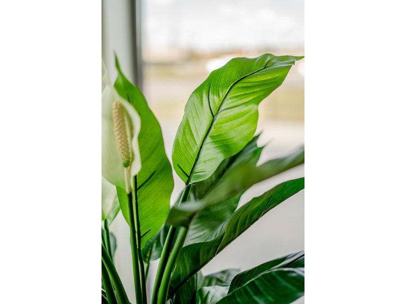 Kunstplant Spathiphyllum wit 85 cm