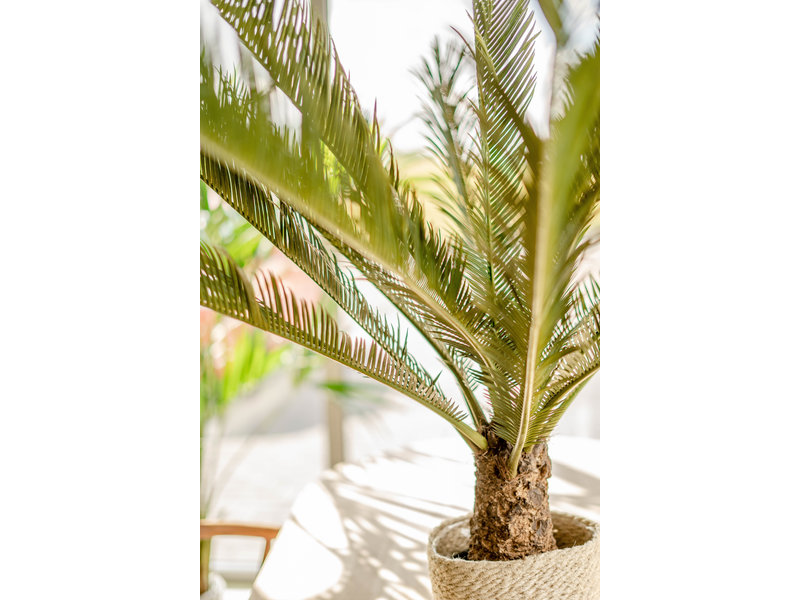 Kunstplant  Cycus Palm Deluxe 95 cm