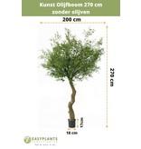 Kunst Olijfboom 270 cm zonder olijven