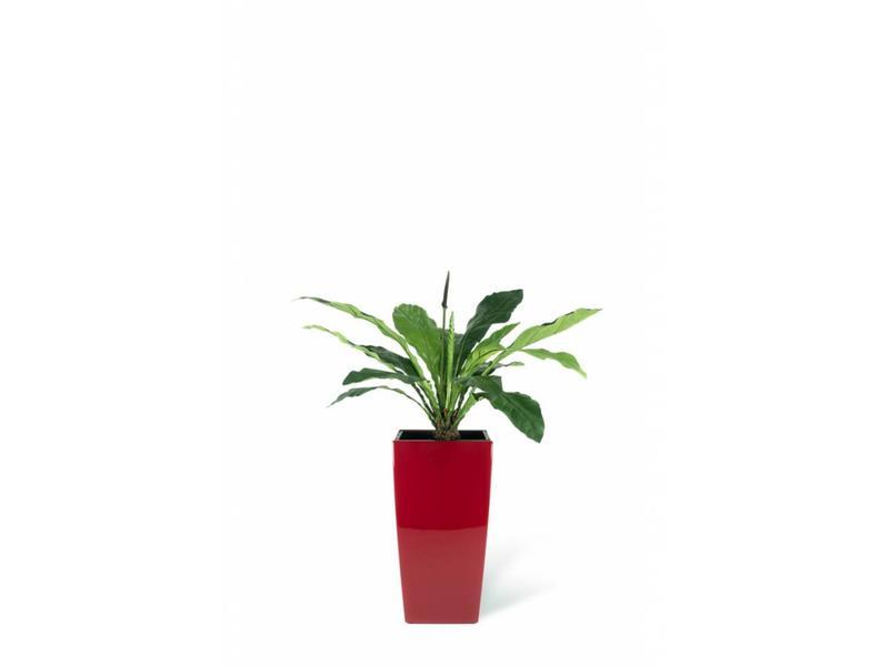 Kunstplant Anthurium 103 cm