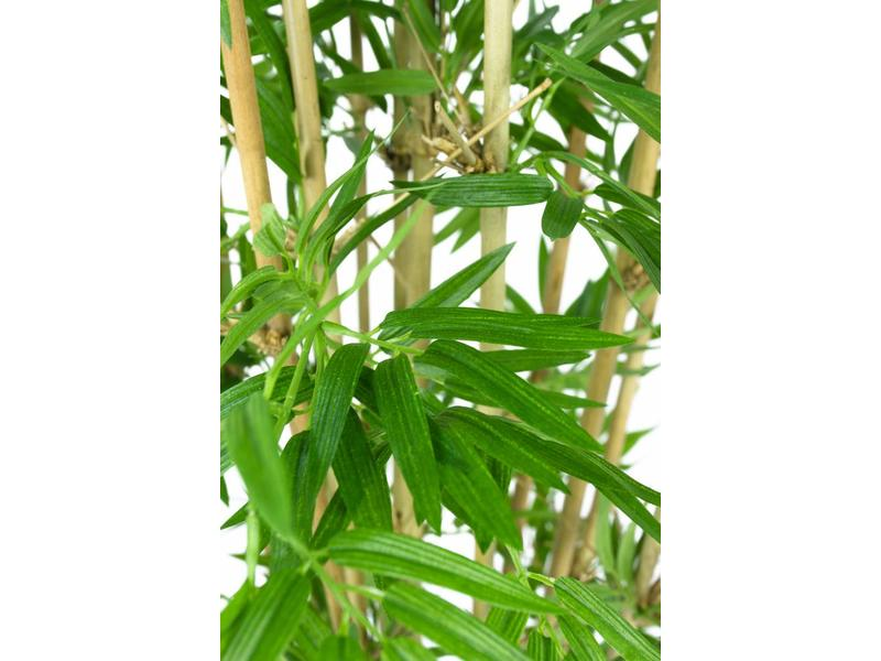 Kunstplant Japanse Bamboe 110 cm