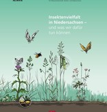 Insektenvielfalt in Niedersachsen – und was wir dafür tun können