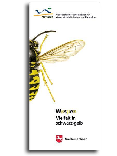 WESPEN - VIELFALT IN SCHWARZ-GELB