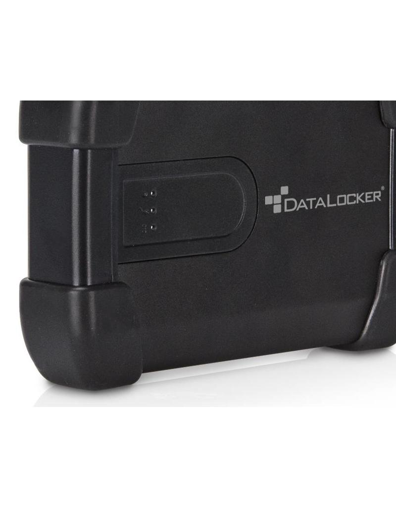 IronKey DataLocker (IronKey) H300 Basic 500GB verschlüsselte externe Festplatte