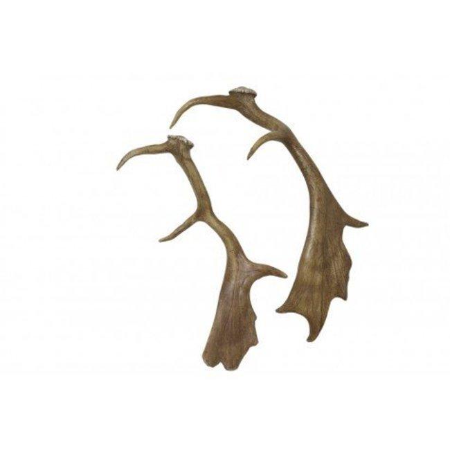 Ornament gewei 51 cm
