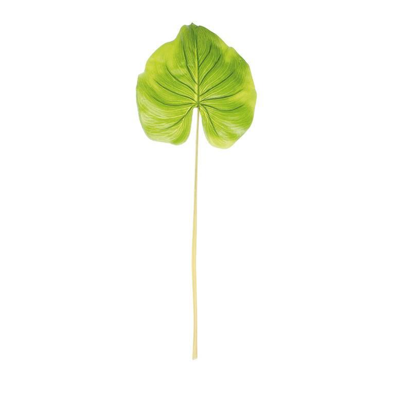 Blad alocasia groen 85 cm