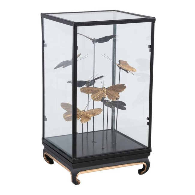 cadence black glass bell jar with butterflies squa