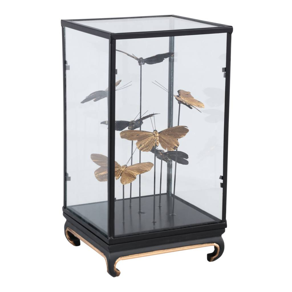 cadence black glass bell jar with butterflies squa