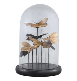 cadence black glass bell jar with butterflies round