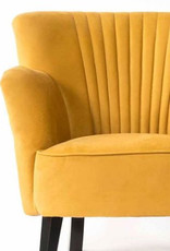 Ritz armani geel