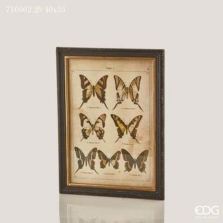 Kader vlinders 40x45
