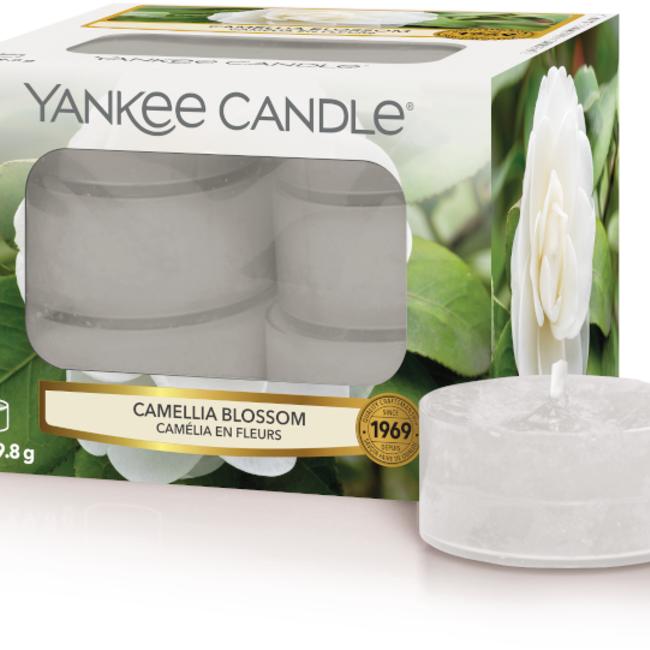 Camellia blossom tealights
