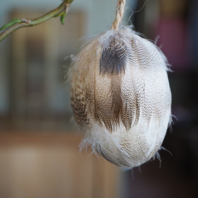 Feather  white duck hanging egg
