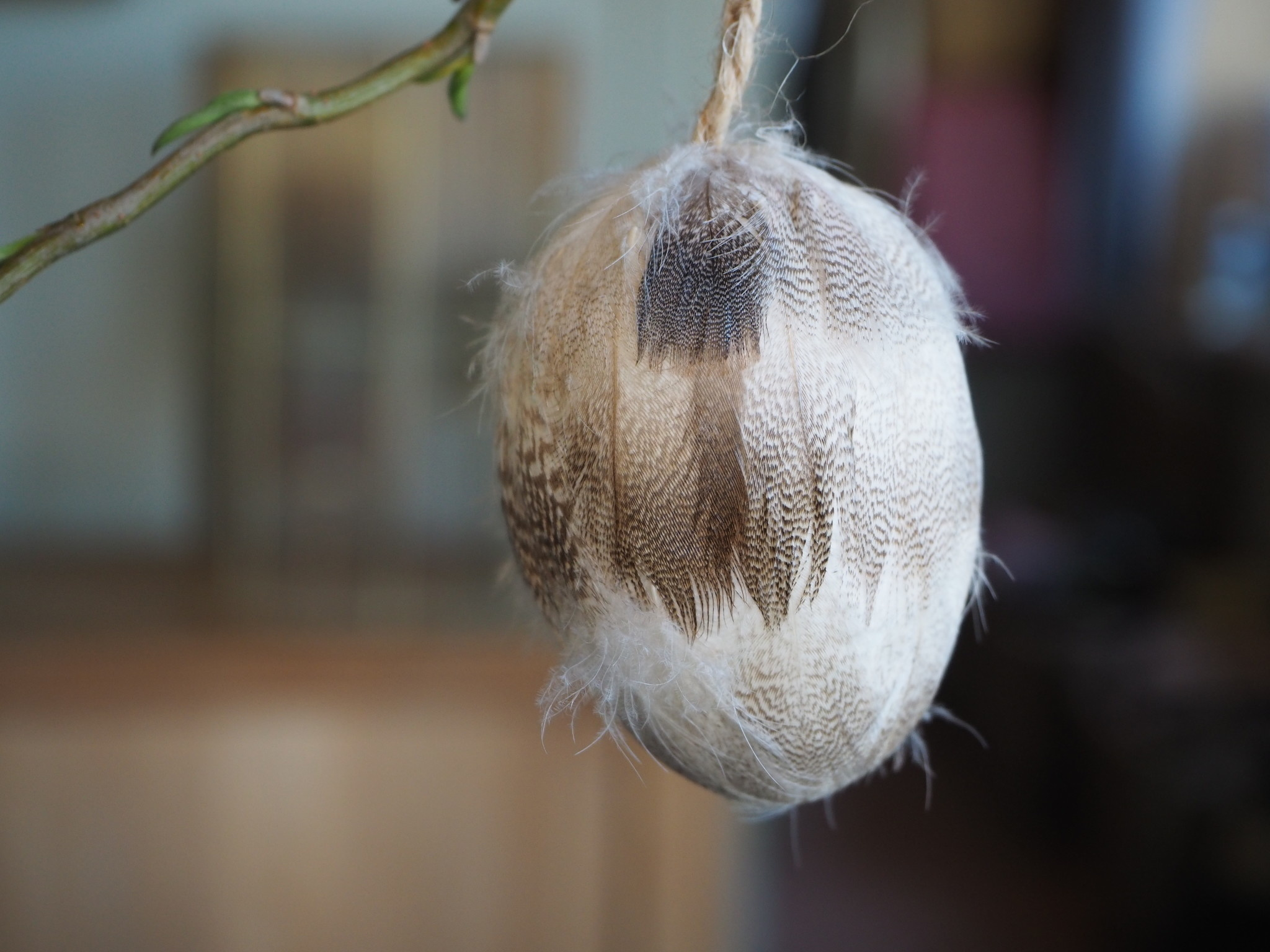 PTMD Feather  white duck hanging egg