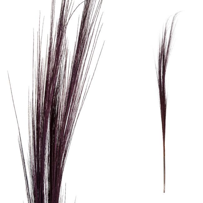 dried flower purple bamboo stem grain small