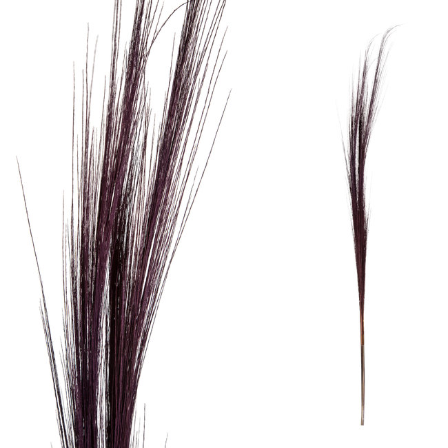 PTMD dried flower purple bamboo stem grain small