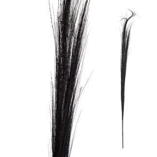 PTMD dried flower black bamboo stem grain