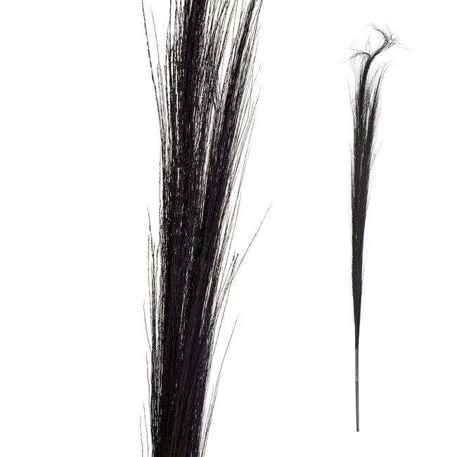dried flower black bamboo stem grain