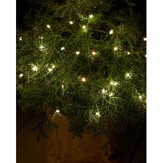 Sirius Knirk 40 leds clear/green outdoor