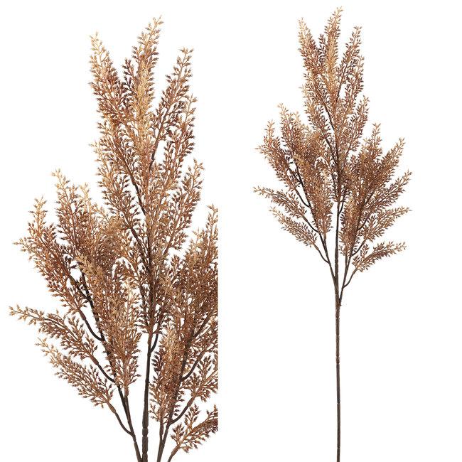 Leaves plant brown heather spray