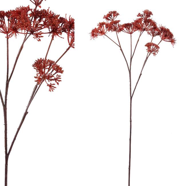 Garden bloem bruin,queeb anne's lace tak