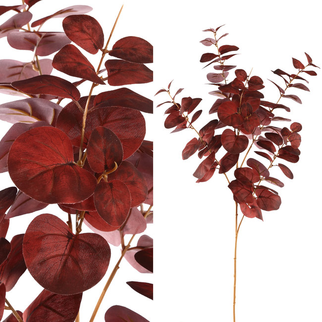 leavesplant burgundy eucalyptus spray