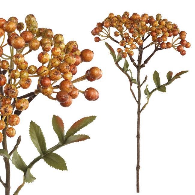 berry plant orange boeket