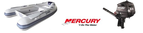 RIB met Mercury benzinemotor