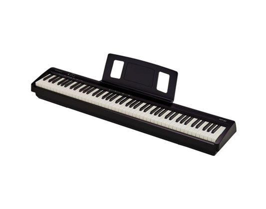 Roland Roland FP 10 Digital Piano