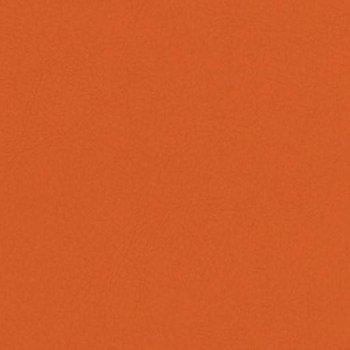 Valencia 6019 orange