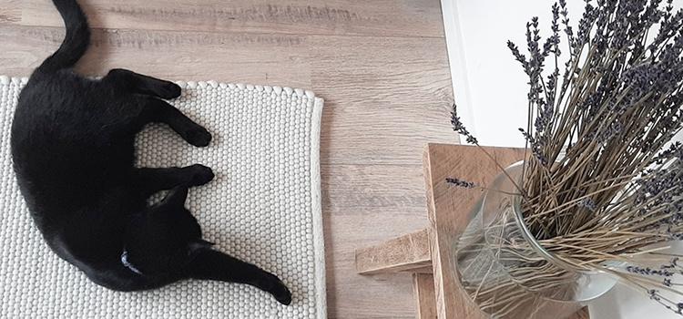 Wollen tapijt wit