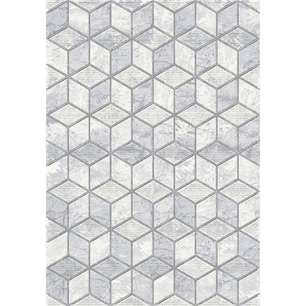 Modern Vloerkleed - Apex Licht grijs 6696