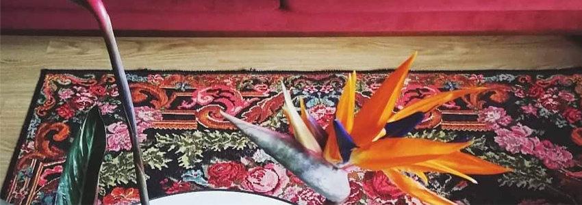 Botanische woonstijl: wel vloerkleed past bij jou?