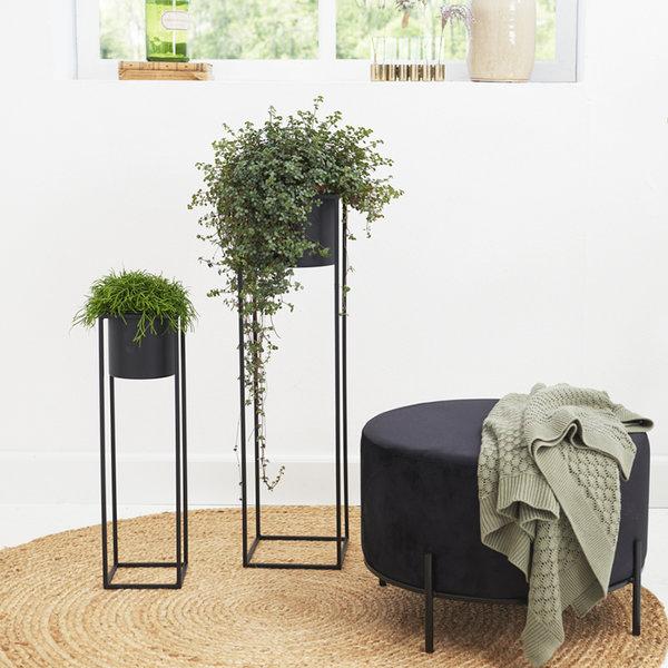 Plantenbak - Violeta Zwart 2/set